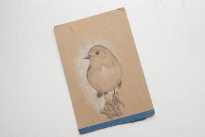 Skizzen und Studien - Vogel